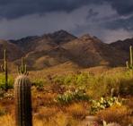 Recent Tucson Residential Land Sales Total $7.7+ Million