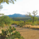 andrada ranch