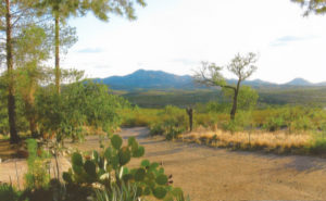 Auction: 271+ Acres – The Andrada Ranch in Vail – November 26th