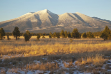 Flagstaff Citizens Celebrate Buying 2,251 acres on Observatory Mesa