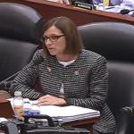 Martha McSally at Budget