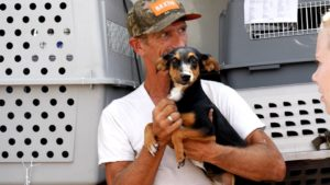 Humane Society of Southern Arizona Takes In Dogs Impacted By Texas Flooding