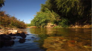 Pima County Living River Project receives national recognition