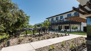 New Experiential Office Buildings Like CASA Continue to Lease